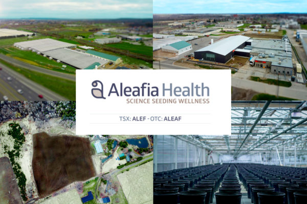 ALEAF Stock - The Cannabis Investor