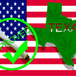 Texas Senate Approves Hemp Production Bill Paving the Way for Full Legalization