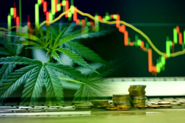 Aleafia Health - The Cannabis Investor