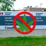 CannTrust's Cannabis Licences Suspended by Health Canada, Is This the Death Blow?