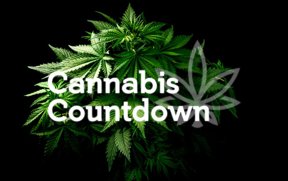 Истории марихуаны марихуана вырастит