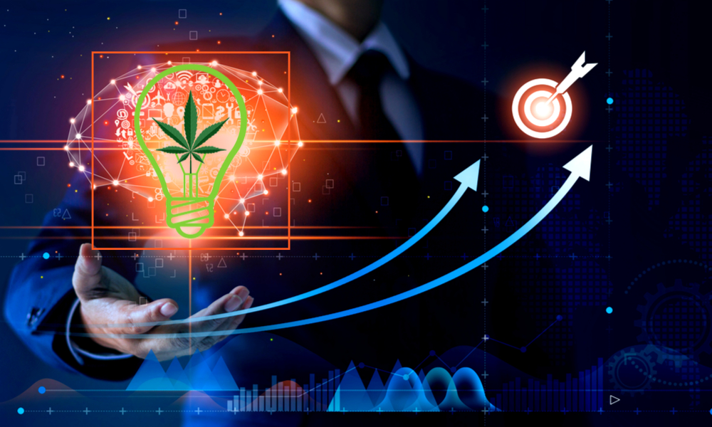 best cannabis stocks to buy in 2020