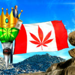 Surprise Surprise The King is Back: Pot Stocks Soar Following Canopy Growth's Q3 Earnings Beat