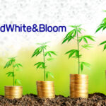 Red White & Bloom Reports Q1 Adjusted Sales of $32.2 Million